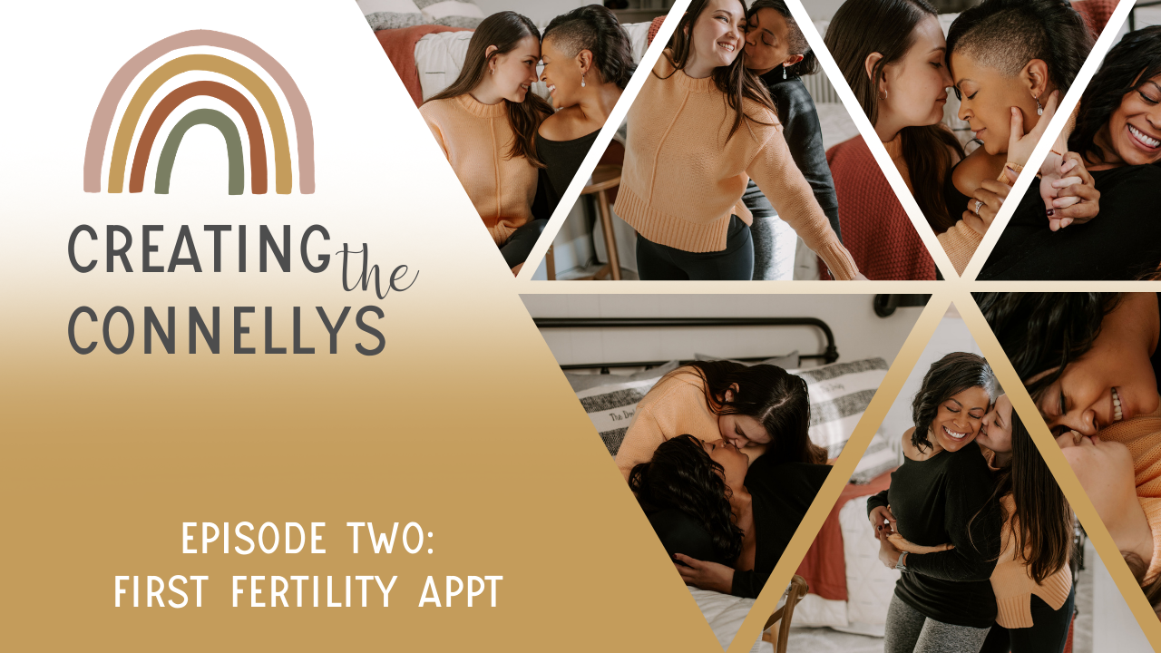 The First Fertility Appointment   Creating The Connellys